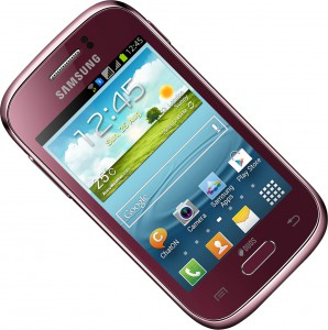Samsung GT-S6312 Galaxy Young Wine Red